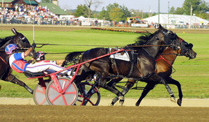 harness racing at BetPTC